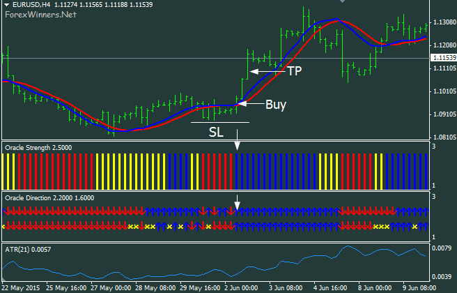 100 Pips Domination System