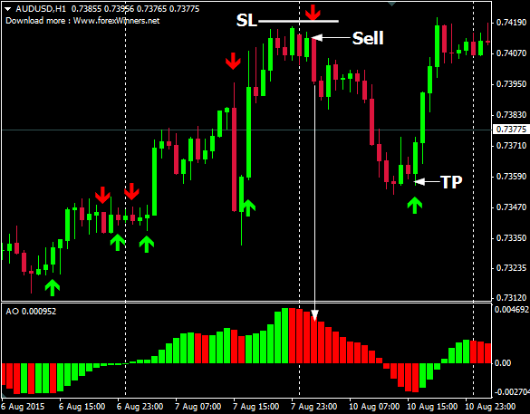 Max forex system