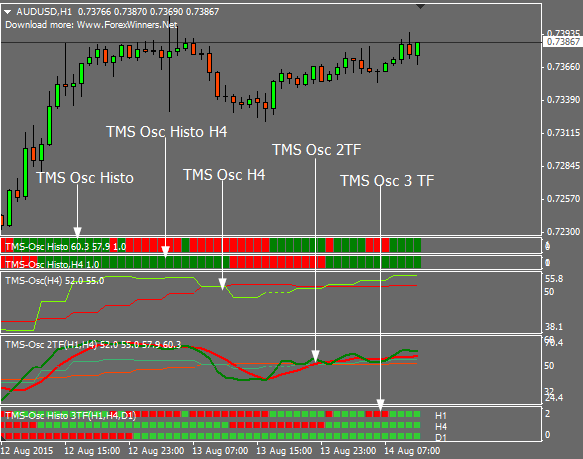Forex tms system