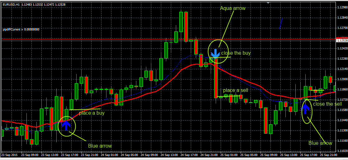 Forex pip counter indicator