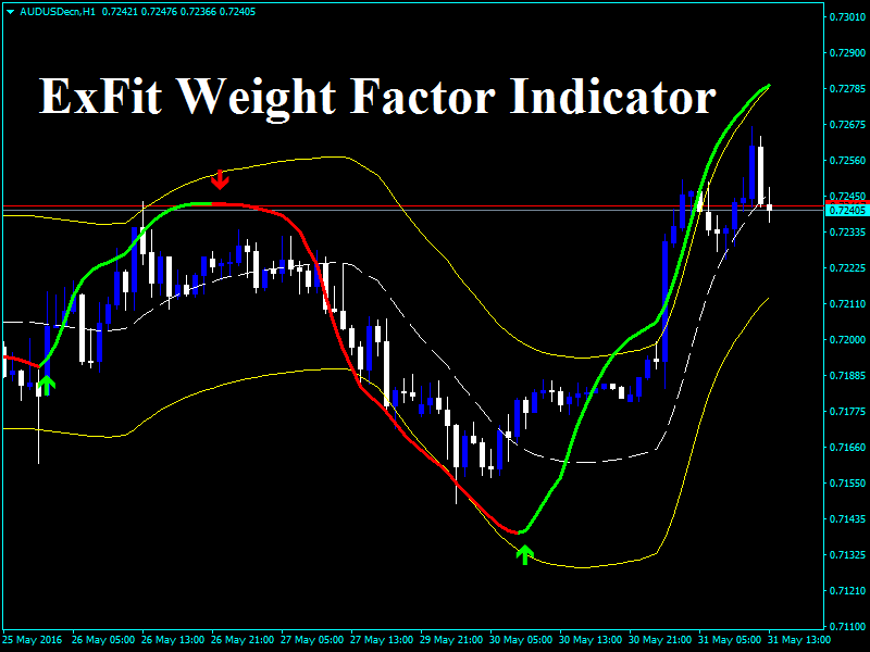 Risk management forex indicator