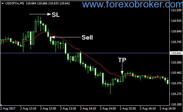 Forex Blog Tema « Top 2 Binary Option Auto Trading Software