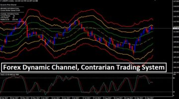 Forex DC Contrarian Strategy