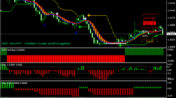 Forex SEFC Filter Swing Trading Strategy